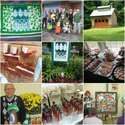 A sampling of photos from our initiatives.